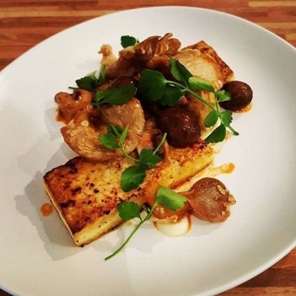 """Photo of SOG restaurant  by <a href=""""/members/profile/community5"""">community5</a> <br/>Pan fried Korean tofu with mushrooms and soy sauce <br/> June 4, 2017  - <a href='/contact/abuse/image/93333/265781'>Report</a>"""