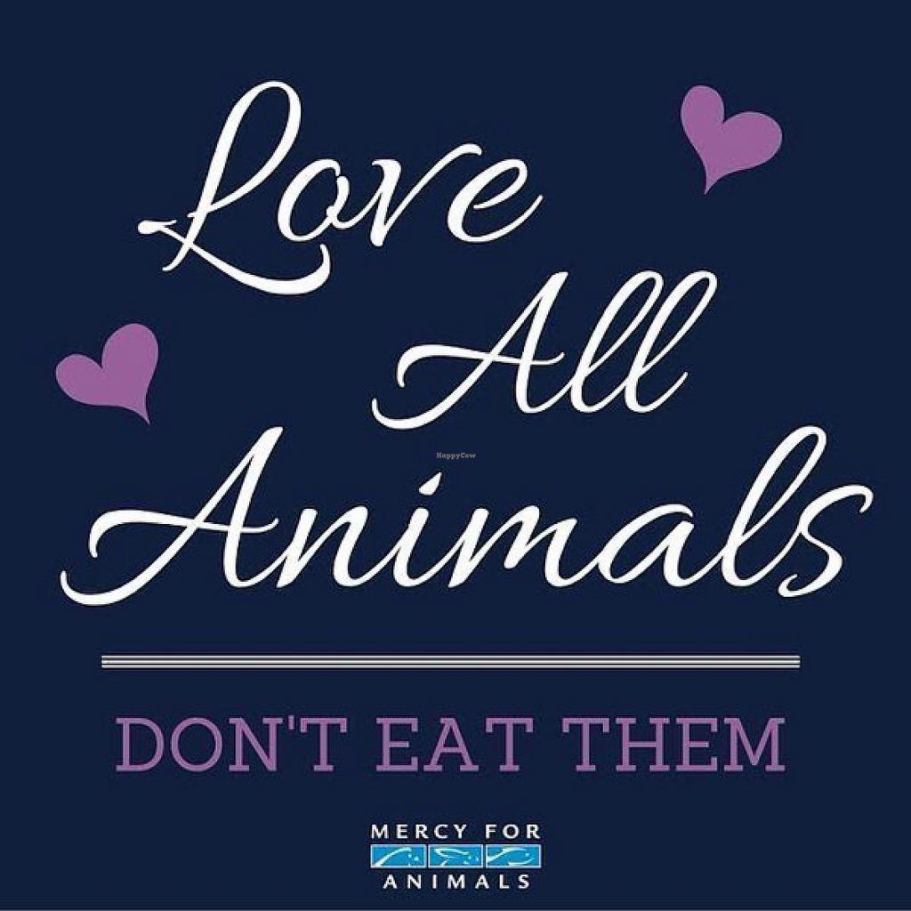 "Photo of Awareness Helps  by <a href=""/members/profile/Veg4Life75"">Veg4Life75</a> <br/>Love All Animals, Don't Eat Them~Mercy For Animials mercyforanimals.org <br/> June 4, 2017  - <a href='/contact/abuse/image/93334/265542'>Report</a>"