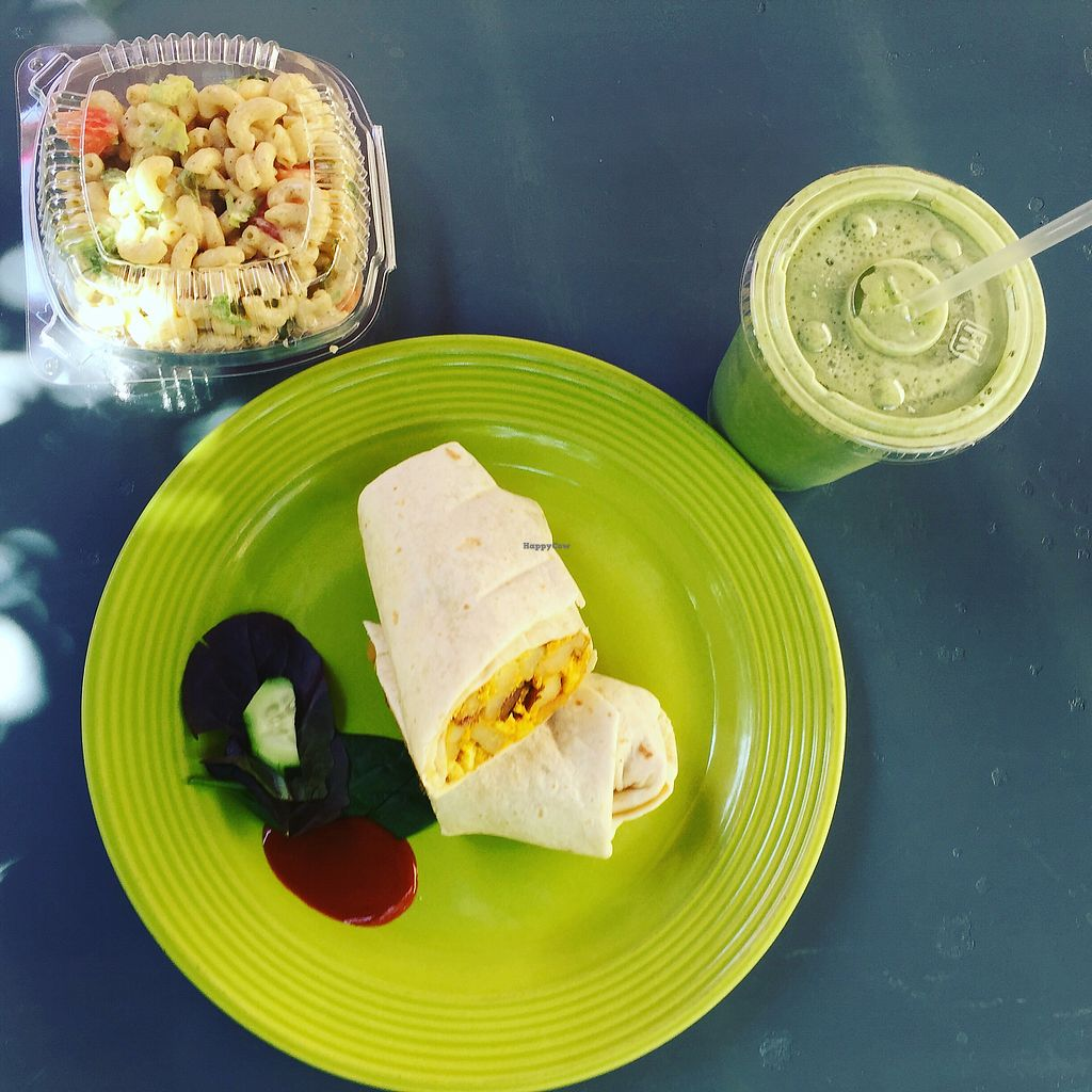 "Photo of Desert Roots Kitchen  by <a href=""/members/profile/plantbaseddfw"">plantbaseddfw</a> <br/>Breakfast burrito potato tofu scramble <br/> March 28, 2018  - <a href='/contact/abuse/image/9333/377112'>Report</a>"