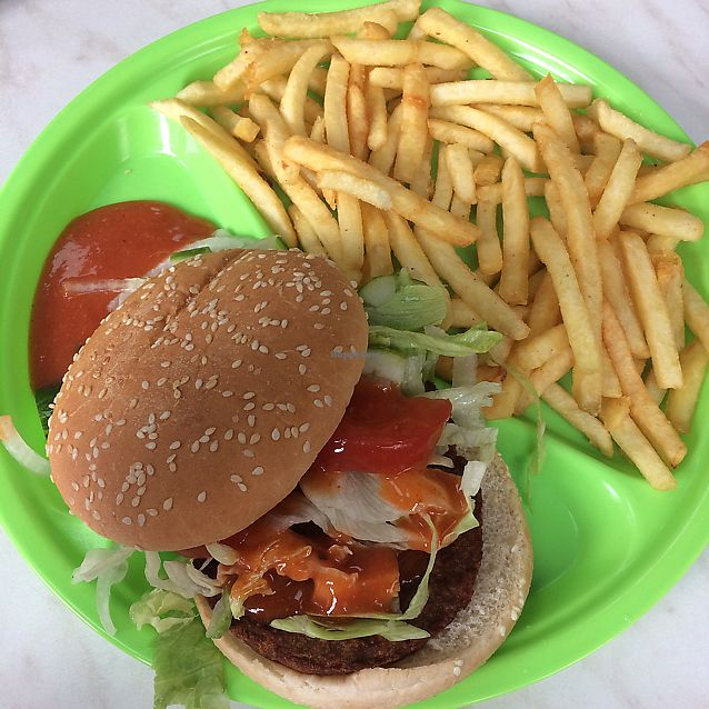 """Photo of Little Aladdin  by <a href=""""/members/profile/YabukiJoe"""">YabukiJoe</a> <br/>Soy burger meal ???? <br/> June 9, 2017  - <a href='/contact/abuse/image/93477/267274'>Report</a>"""