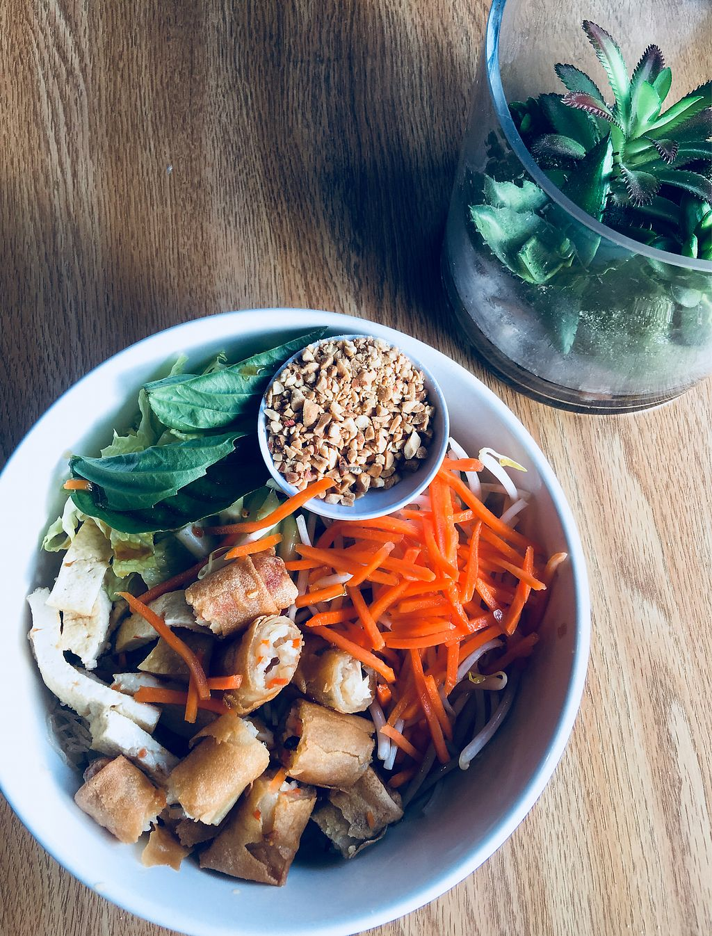 """Photo of 208 Pho & Vegan  by <a href=""""/members/profile/ChereseTarter"""">ChereseTarter</a> <br/>Vegan Bun Chay <br/> March 24, 2018  - <a href='/contact/abuse/image/93583/375036'>Report</a>"""