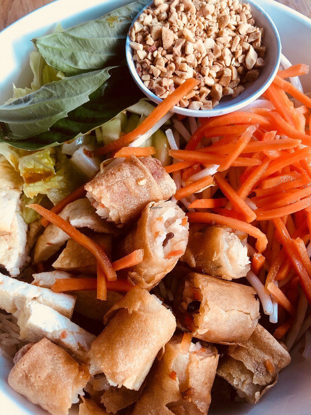 """Photo of 208 Pho & Vegan  by <a href=""""/members/profile/ChereseTarter"""">ChereseTarter</a> <br/>Bun Chay  <br/> March 24, 2018  - <a href='/contact/abuse/image/93583/375039'>Report</a>"""