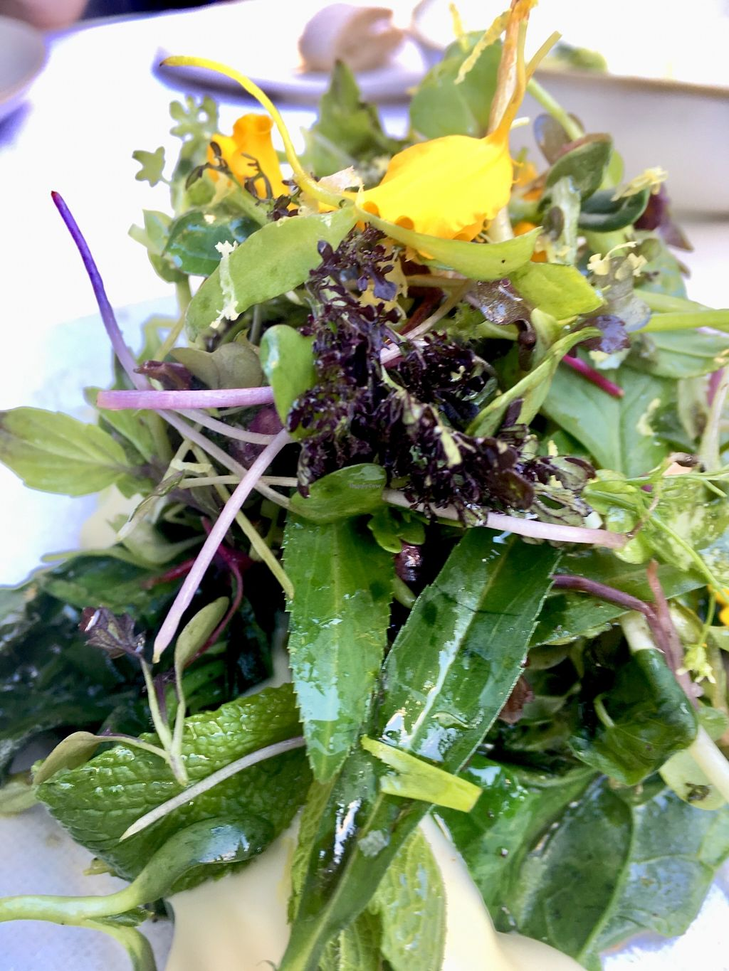 "Photo of abcV  by <a href=""/members/profile/milos99"">milos99</a> <br/>Sautéed leafy greens, whipped sunchoke, herbs and flowers  <br/> October 22, 2017  - <a href='/contact/abuse/image/93588/317558'>Report</a>"