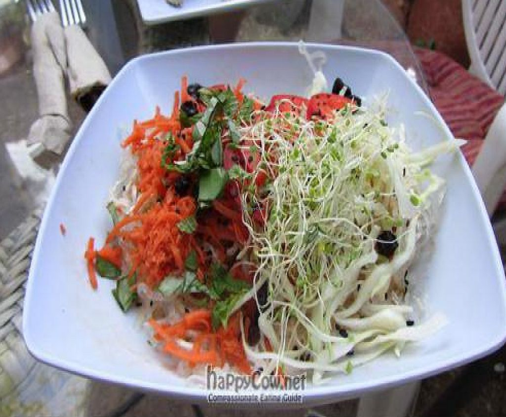 "Photo of ChocolaTree Organic Oasis  by <a href=""/members/profile/dishonraw"">dishonraw</a> <br/>thai noodles <br/> May 28, 2011  - <a href='/contact/abuse/image/9364/189688'>Report</a>"