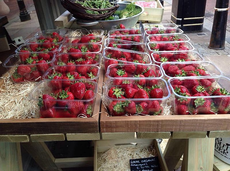 "Photo of Austens of Rochester  by <a href=""/members/profile/TARAMCDONALD"">TARAMCDONALD</a> <br/>amazing fresh fruit and veg all the time.  Locally produced at surrounding farms, great quality not overly priced and also sell organic produce <br/> June 8, 2017  - <a href='/contact/abuse/image/93652/266896'>Report</a>"