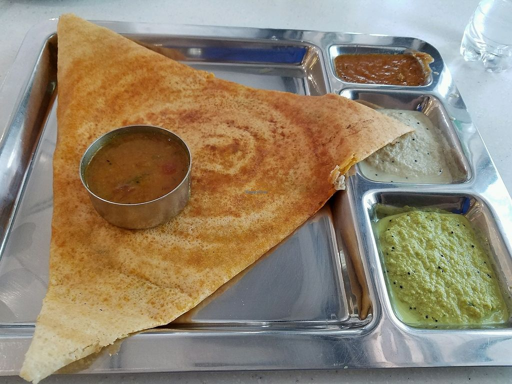 """Photo of Saravanaa Bhavan  by <a href=""""/members/profile/chulaww"""">chulaww</a> <br/>mysore masala dosa <br/> February 18, 2018  - <a href='/contact/abuse/image/93727/360723'>Report</a>"""