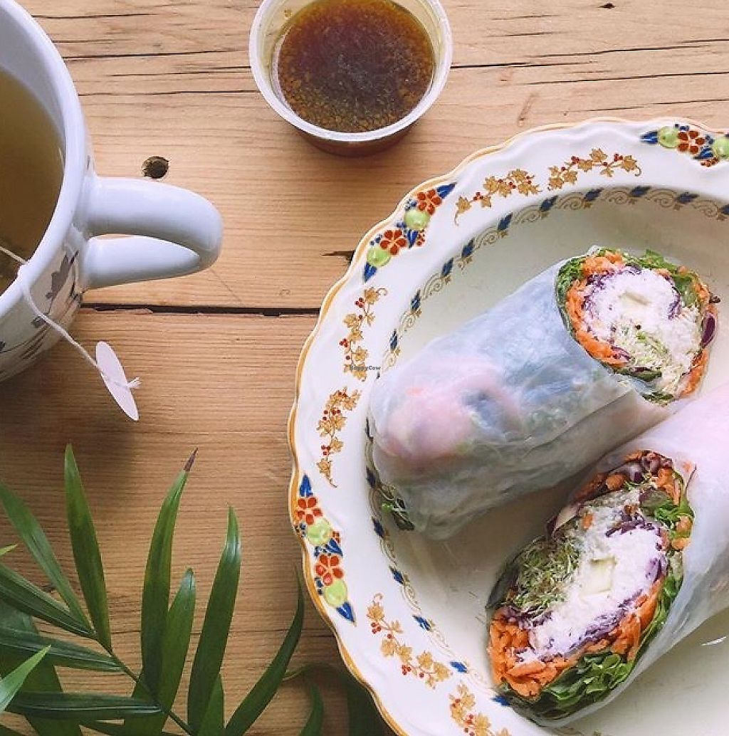 """Photo of Archibald & Alistair  by <a href=""""/members/profile/oscaroui"""">oscaroui</a> <br/>The most delicious spring rolls filled with fresh veggies and vegan cheese made out of macadamia nuts & a delicate jasmine tea! ✨ <br/> June 10, 2017  - <a href='/contact/abuse/image/93756/267806'>Report</a>"""