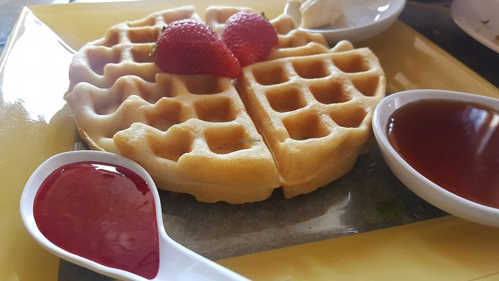 "Photo of Water Garden Cafe  by <a href=""/members/profile/Tots"">Tots</a> <br/>Vegan waffle <br/> September 16, 2017  - <a href='/contact/abuse/image/93760/305035'>Report</a>"