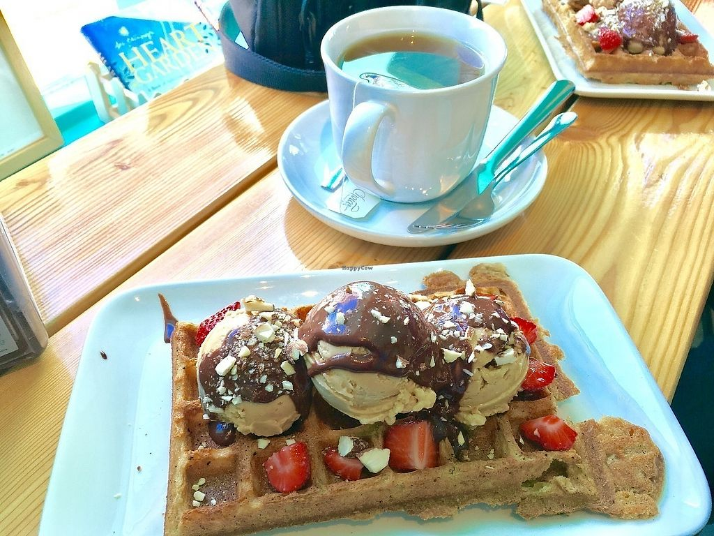 """Photo of Joylato  by <a href=""""/members/profile/vegan%20frog"""">vegan frog</a> <br/>Vegan waffle with salted caramel ice cream <br/> June 9, 2017  - <a href='/contact/abuse/image/93782/267473'>Report</a>"""