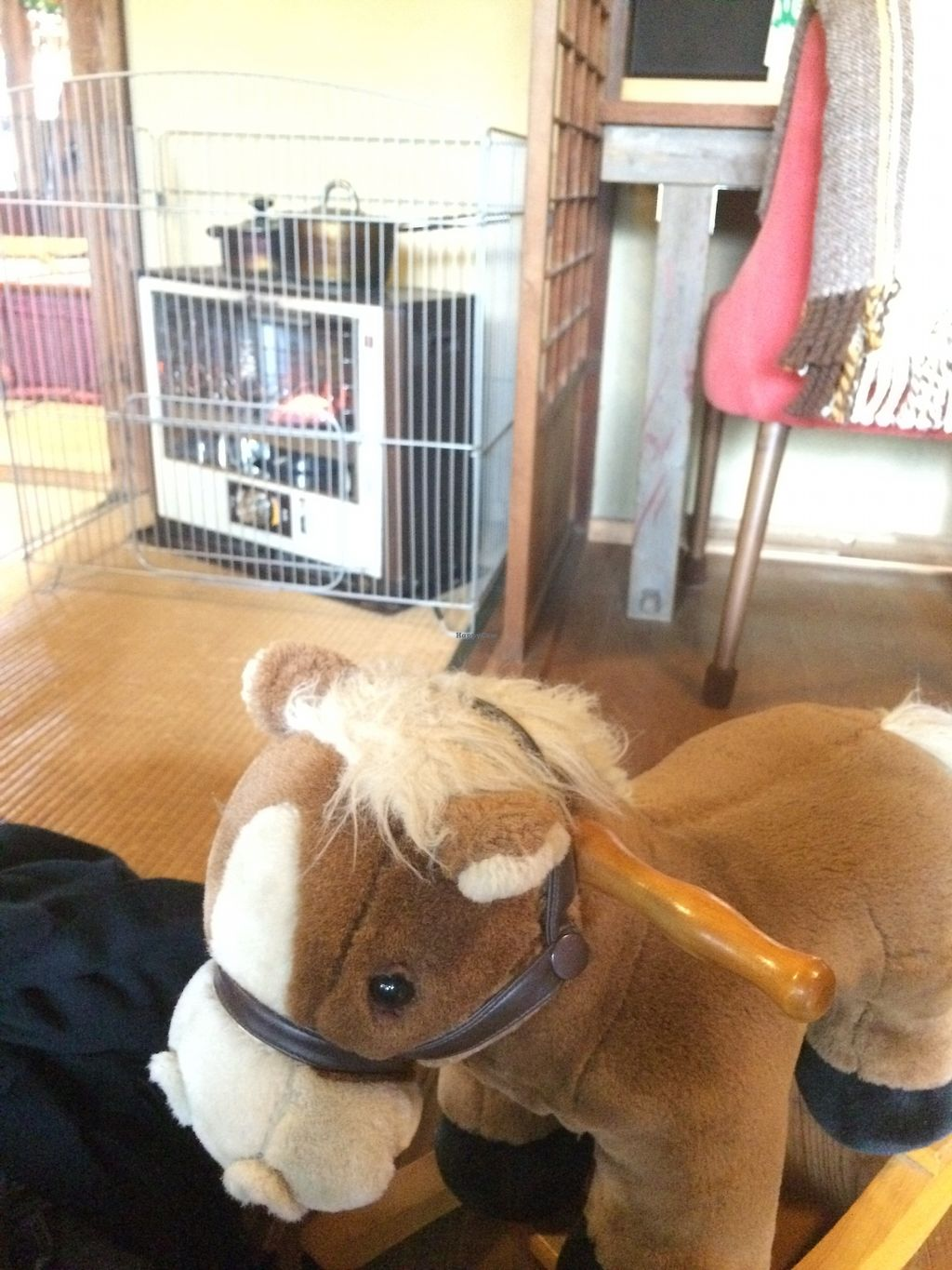 """Photo of Pace  by <a href=""""/members/profile/twocats"""">twocats</a> <br/>Rocking horse for kids <br/> November 6, 2017  - <a href='/contact/abuse/image/94047/322464'>Report</a>"""