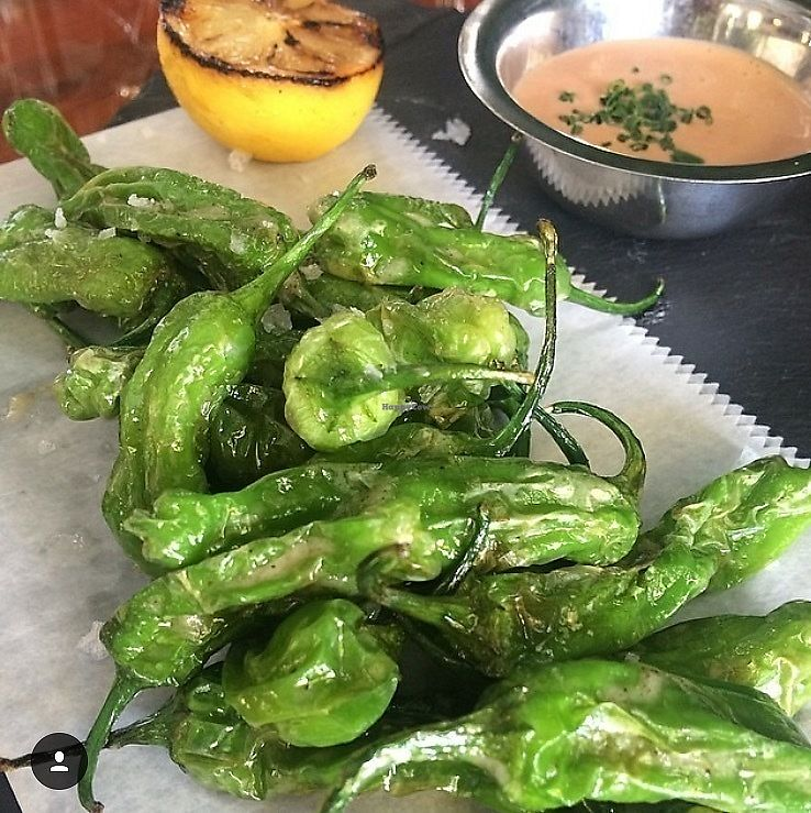 """Photo of Avocado Grill  by <a href=""""/members/profile/Avogrill"""">Avogrill</a> <br/>Shishito peppers  <br/> June 15, 2017  - <a href='/contact/abuse/image/94136/269577'>Report</a>"""