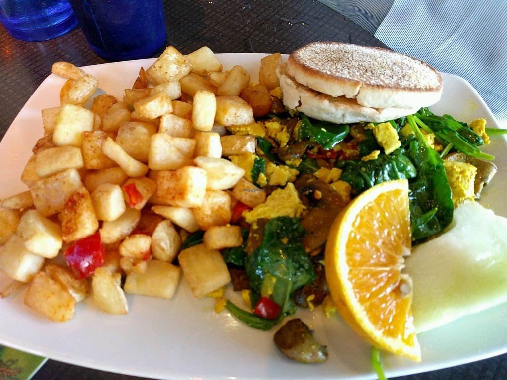 """Photo of Harvey's  by <a href=""""/members/profile/The%20Hungry%20Vegan"""">The Hungry Vegan</a> <br/>Tofu Scramble <br/> September 3, 2017  - <a href='/contact/abuse/image/94247/300613'>Report</a>"""