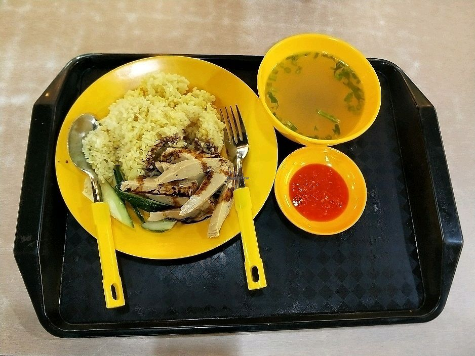 "Photo of Vegan Paradise - Bedok North  by <a href=""/members/profile/%E8%AE%B8%E6%99%BA%E5%BC%BA"">许智强</a> <br/>素白鸡饭 veg white chicken rice <br/> December 10, 2017  - <a href='/contact/abuse/image/94291/334256'>Report</a>"