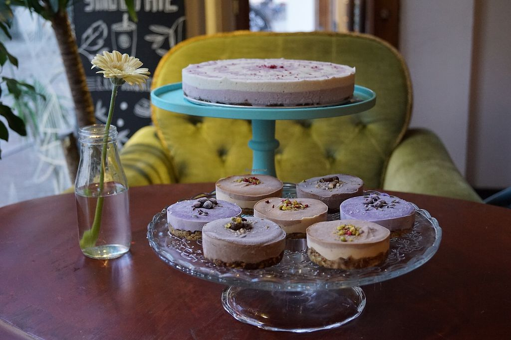 """Photo of OAS Cafe  by <a href=""""/members/profile/RabeaHerzbub"""">RabeaHerzbub</a> <br/>raw cakes all vegan gluten-free and refined sugar free <br/> March 16, 2018  - <a href='/contact/abuse/image/94304/371326'>Report</a>"""