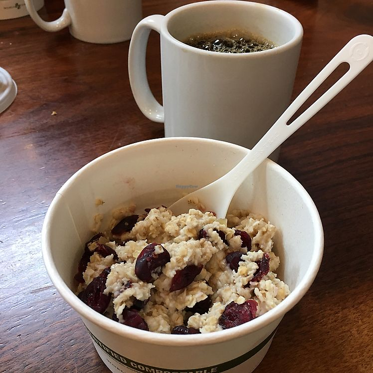 """Photo of Barrington Coffee Roasting Company  by <a href=""""/members/profile/iamrunningthis"""">iamrunningthis</a> <br/>Oatmeal available vegan <br/> June 30, 2017  - <a href='/contact/abuse/image/94353/274959'>Report</a>"""