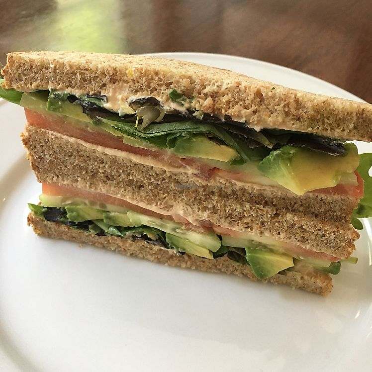 "Photo of Cocobeet  by <a href=""/members/profile/iamrunningthis"">iamrunningthis</a> <br/>avocado sandwich  <br/> August 16, 2017  - <a href='/contact/abuse/image/94356/293289'>Report</a>"