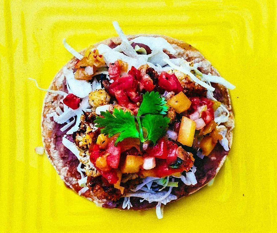 "Photo of Sprouting Dreams  by <a href=""/members/profile/Sproutingdreams"">Sproutingdreams</a> <br/>Jerk Cauliflower Tostada  <br/> September 29, 2017  - <a href='/contact/abuse/image/94596/309876'>Report</a>"