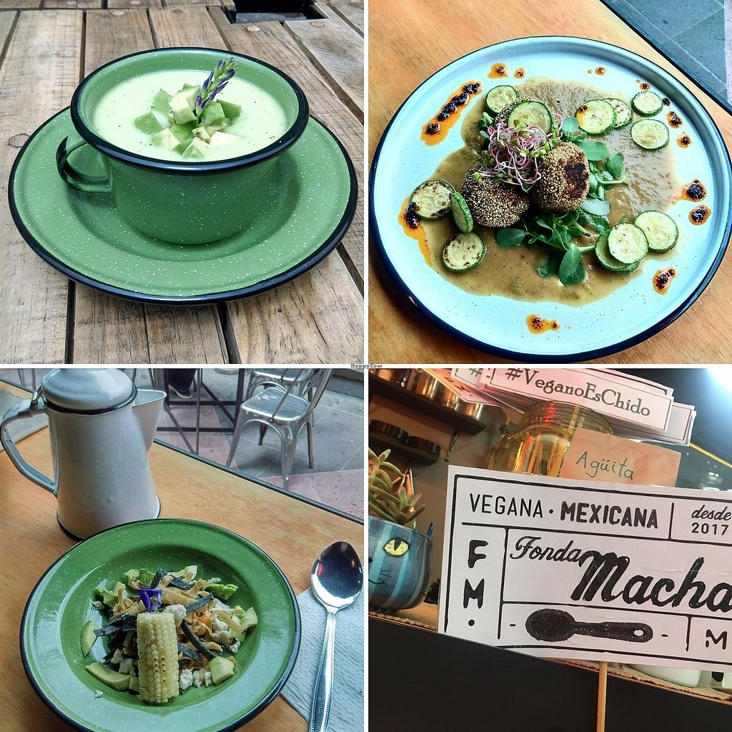 """Photo of CLOSED: Fonda Macha  by <a href=""""/members/profile/DanyGato"""">DanyGato</a> <br/>Gazpacho de Aguacate : (avocado gazpacho) Tortitas de Papa y Amaranto (potatoe balls covered with amaranto, seres with sukini and verdolagas served with green sauce) Sopa Macha (traditional tomatoe soup served with vegatbles and tortilla chips) <br/> June 30, 2017  - <a href='/contact/abuse/image/94849/274951'>Report</a>"""