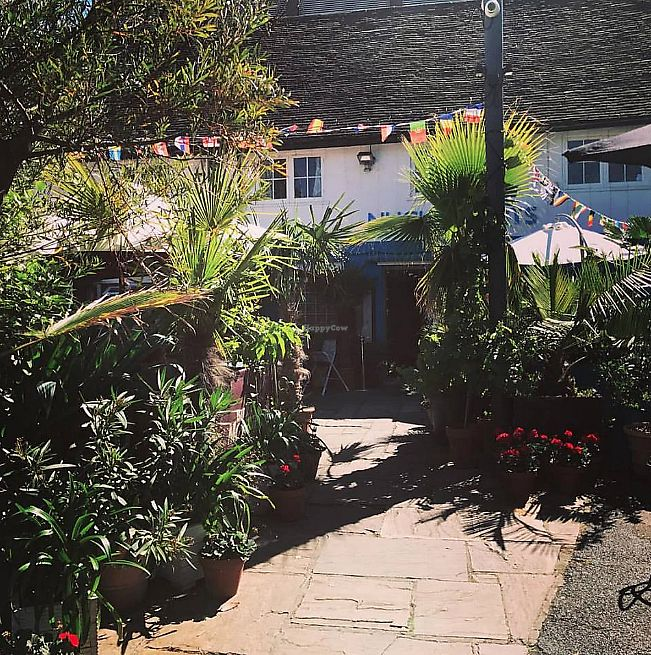 """Photo of Cafe Nucleus  by <a href=""""/members/profile/TARAMCDONALD"""">TARAMCDONALD</a> <br/>Outside garden space <br/> June 27, 2017  - <a href='/contact/abuse/image/94897/274108'>Report</a>"""