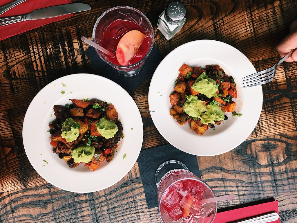 "Photo of The Tipsy Vegan  by <a href=""/members/profile/Avj"">Avj</a> <br/>Mexican Hash & Kombucha <br/> August 19, 2017  - <a href='/contact/abuse/image/94965/294276'>Report</a>"