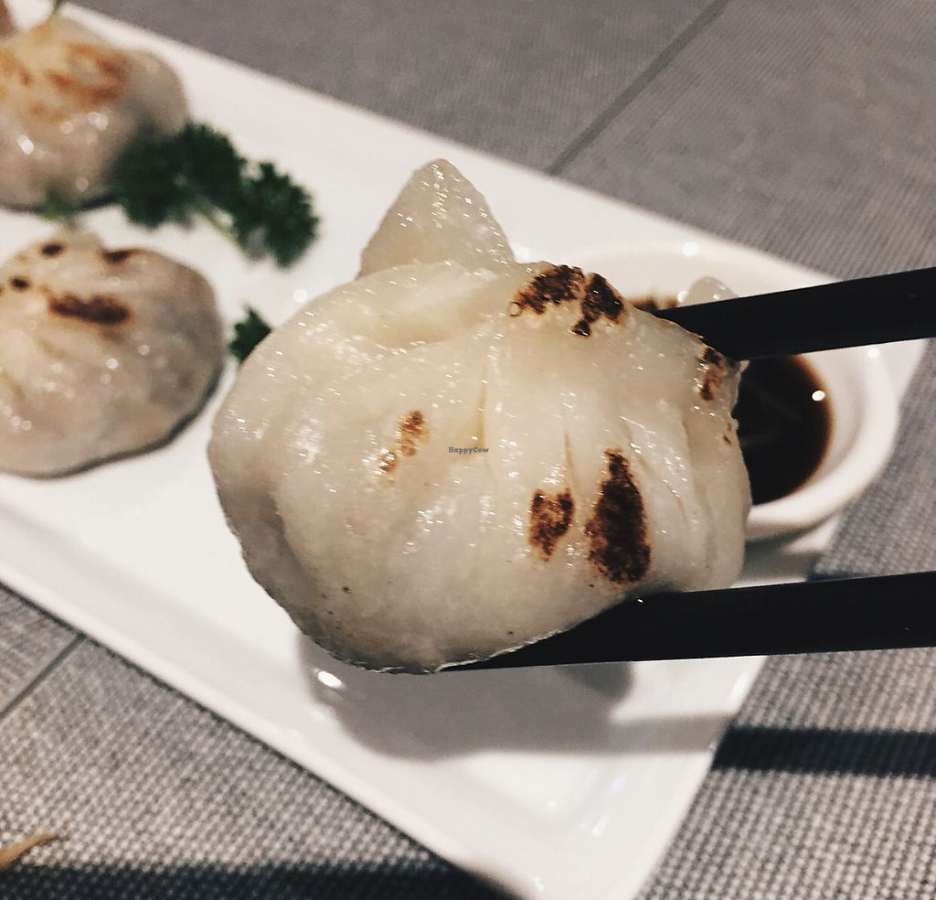 "Photo of Lotus Kitchen  by <a href=""/members/profile/CherylQuincy"">CherylQuincy</a> <br/>Dumpling <br/> January 31, 2018  - <a href='/contact/abuse/image/94977/353055'>Report</a>"
