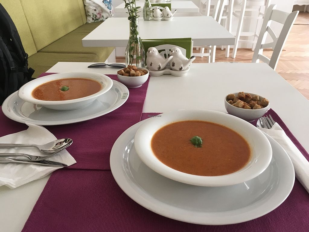 """Photo of She's Green  by <a href=""""/members/profile/Alina%26Deian"""">Alina&Deian</a> <br/>Tasty soup <br/> December 3, 2017  - <a href='/contact/abuse/image/95077/331897'>Report</a>"""
