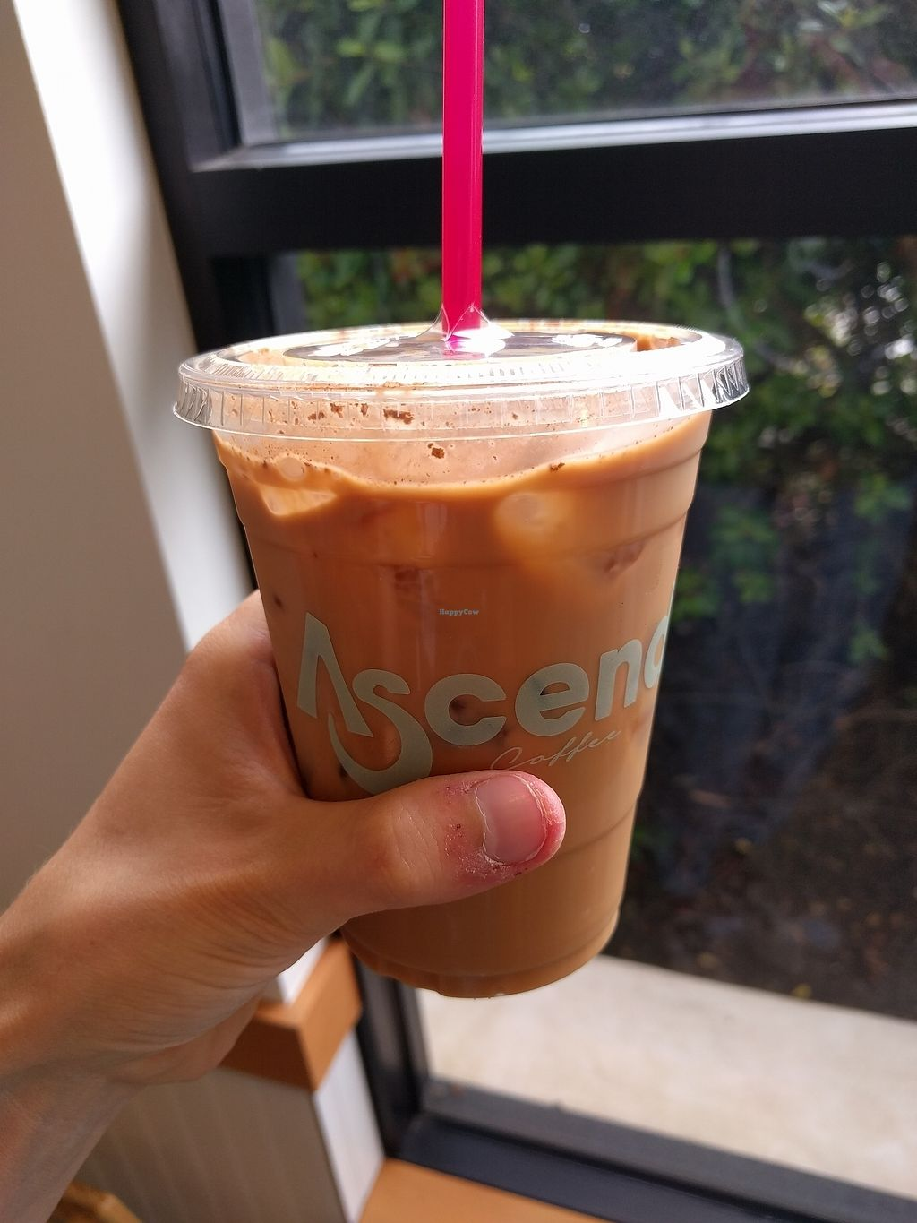 "Photo of Ascendo Coffee  by <a href=""/members/profile/plantpig"">plantpig</a> <br/>Iced chai latte <br/> July 21, 2017  - <a href='/contact/abuse/image/95149/282652'>Report</a>"