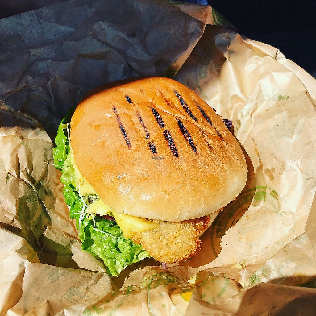 """Photo of Vburger  by <a href=""""/members/profile/The%20London%20Vegan"""">The London Vegan</a> <br/>Seitan Burger with extra cheese and avo  <br/> July 2, 2017  - <a href='/contact/abuse/image/95197/276091'>Report</a>"""