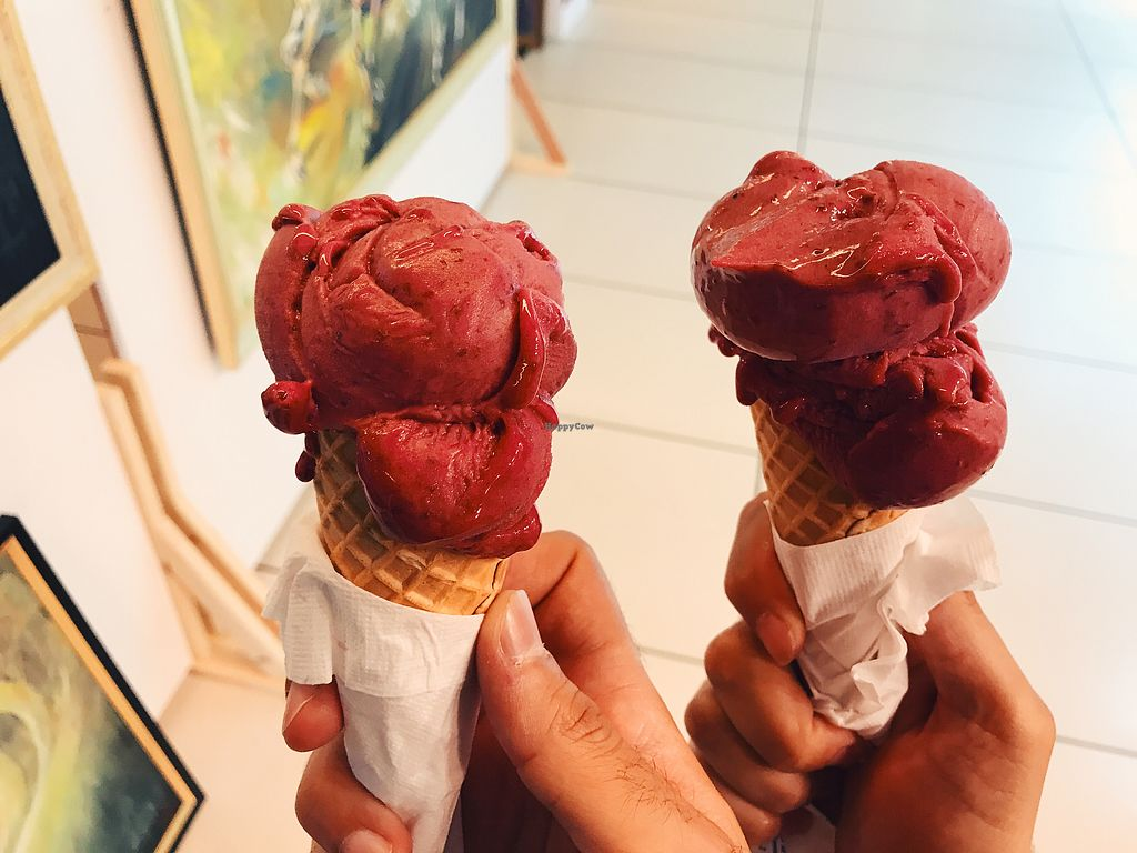 """Photo of Mado  by <a href=""""/members/profile/veganoteacher"""">veganoteacher</a> <br/>Vegan Ice-cream with Raspberry <br/> July 2, 2017  - <a href='/contact/abuse/image/95225/275837'>Report</a>"""