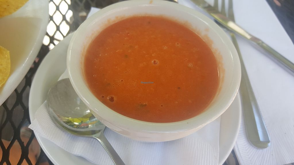 """Photo of Local Flavor Cafe  by <a href=""""/members/profile/Tots"""">Tots</a> <br/>Vegan tomato basil soup with coconut milk base <br/> July 6, 2017  - <a href='/contact/abuse/image/95275/277252'>Report</a>"""