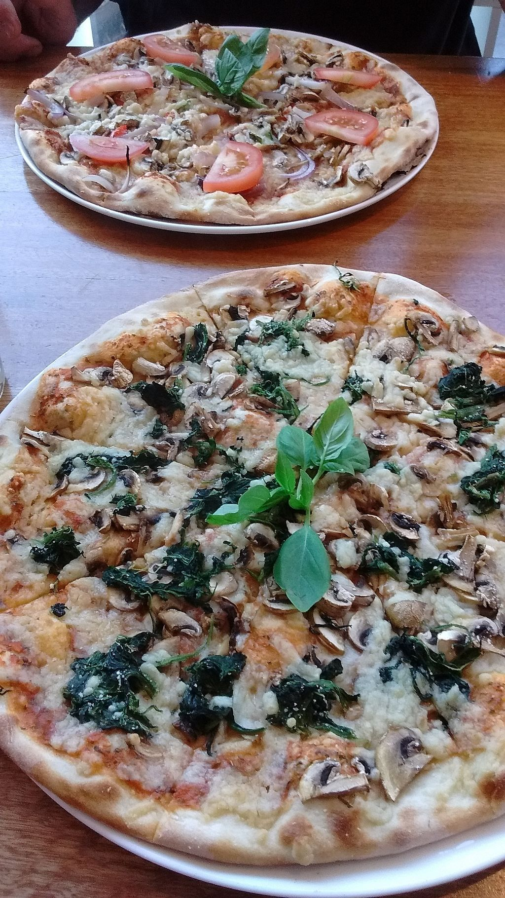 "Photo of Mandala Pizza and Salad Emporium  by <a href=""/members/profile/Coral999"">Coral999</a> <br/>Pizza with vegan mozzarella!  Both were build your own  <br/> July 2, 2017  - <a href='/contact/abuse/image/95288/276080'>Report</a>"