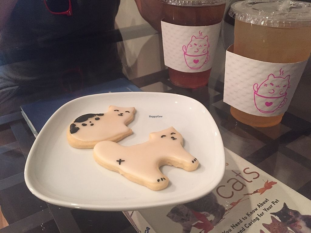 """Photo of Kawaii Kitty Cafe  by <a href=""""/members/profile/kmanchester306"""">kmanchester306</a> <br/>Vegan cat cookies <br/> July 4, 2017  - <a href='/contact/abuse/image/95406/276742'>Report</a>"""