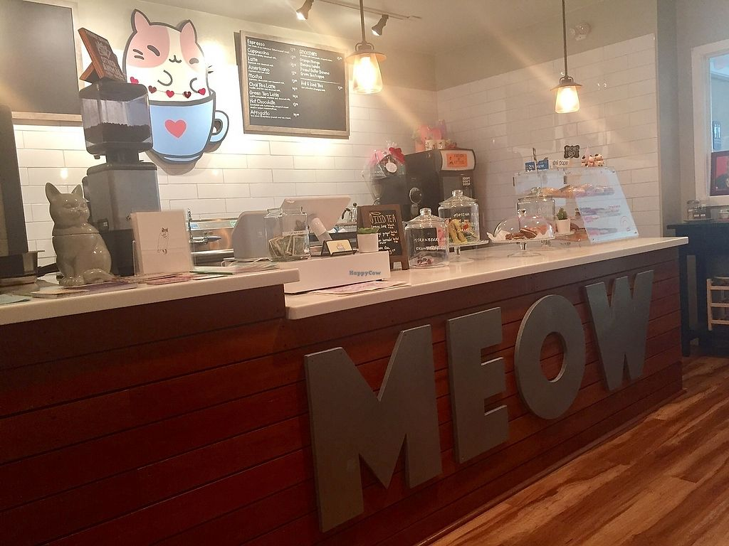 """Photo of Kawaii Kitty Cafe  by <a href=""""/members/profile/kmanchester306"""">kmanchester306</a> <br/>Cafe <br/> July 4, 2017  - <a href='/contact/abuse/image/95406/276743'>Report</a>"""