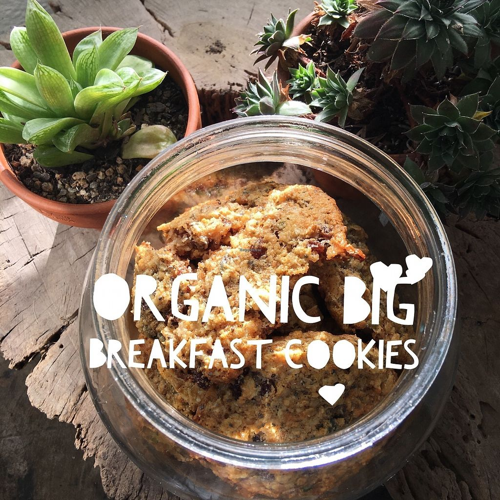 """Photo of Herbivore Kind Kitchen  by <a href=""""/members/profile/IsharaAhimsaLove"""">IsharaAhimsaLove</a> <br/>Big Breakfast Cookies <br/> July 8, 2017  - <a href='/contact/abuse/image/95523/277717'>Report</a>"""