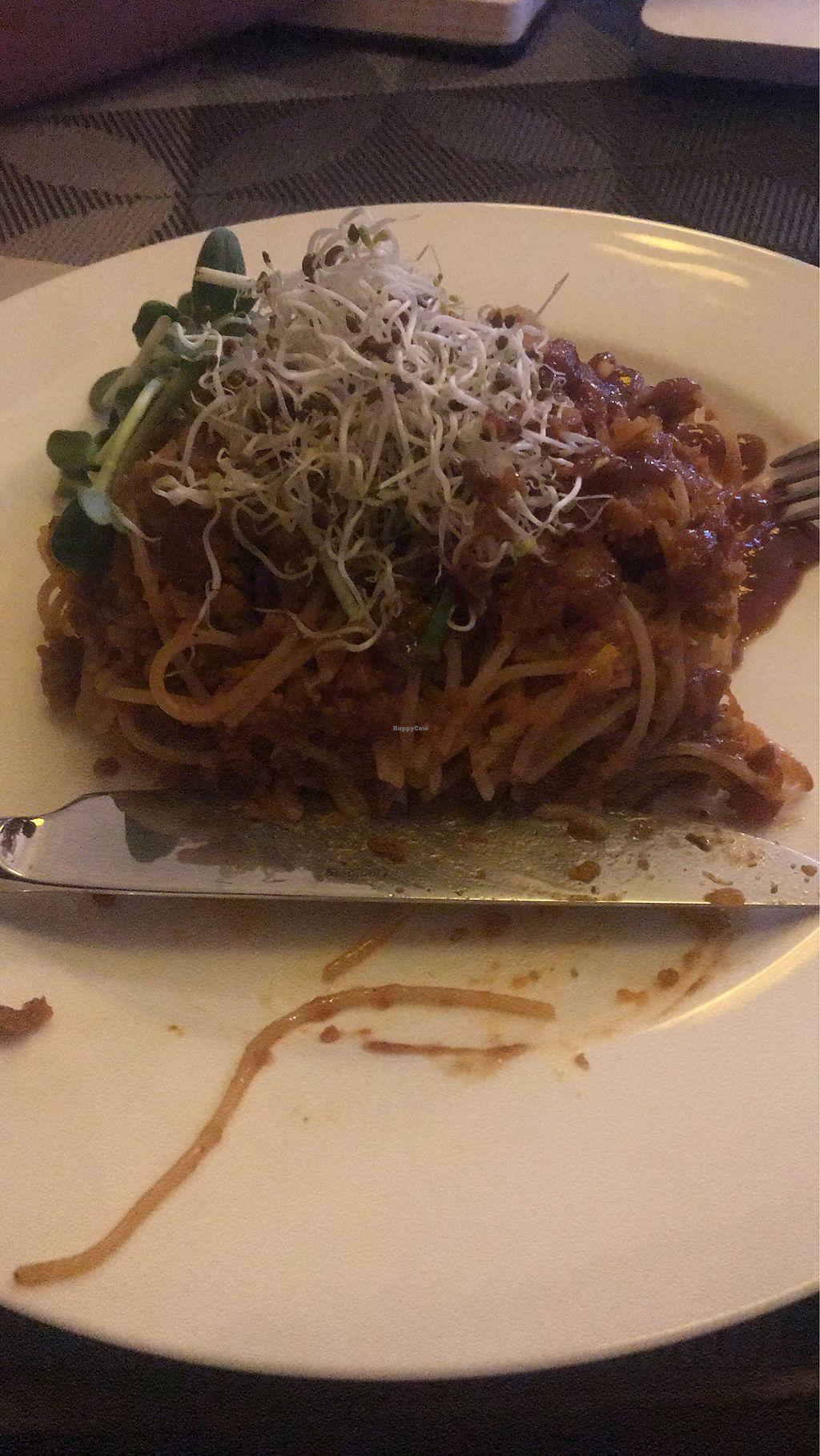 "Photo of Kolo  by <a href=""/members/profile/Duki"">Duki</a> <br/>Spaghetti  <br/> March 9, 2018  - <a href='/contact/abuse/image/95839/368513'>Report</a>"
