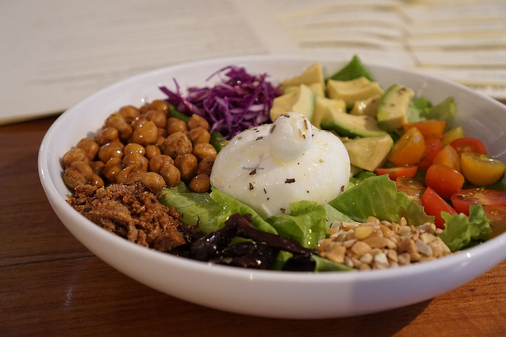 """Photo of Sequel Bistro & Juice Bar  by <a href=""""/members/profile/Dhaval"""">Dhaval</a> <br/>Avocado, Sauerkraut & Baby Burrata Bowl <br/> March 9, 2018  - <a href='/contact/abuse/image/95840/368388'>Report</a>"""