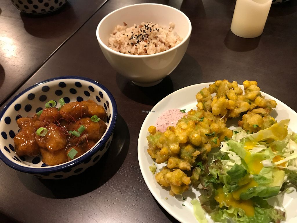 """Photo of Vegi Kitchen Gu Gu  by <a href=""""/members/profile/daninhavegan"""">daninhavegan</a> <br/>Brown rice, soy meat with sweet sauce and avocado and corn tenpura <br/> September 16, 2017  - <a href='/contact/abuse/image/95858/304887'>Report</a>"""