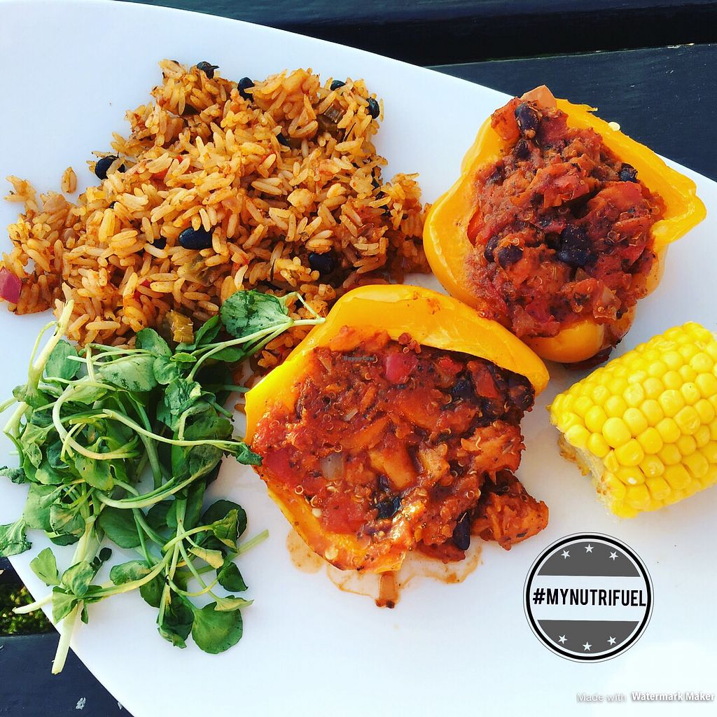 """Photo of Harvester  by <a href=""""/members/profile/MyNutriFuel"""">MyNutriFuel</a> <br/>Stuffed peppers, with spicy rice and a side of sweet potato fries #mynutrifuel <br/> July 21, 2017  - <a href='/contact/abuse/image/95936/283001'>Report</a>"""