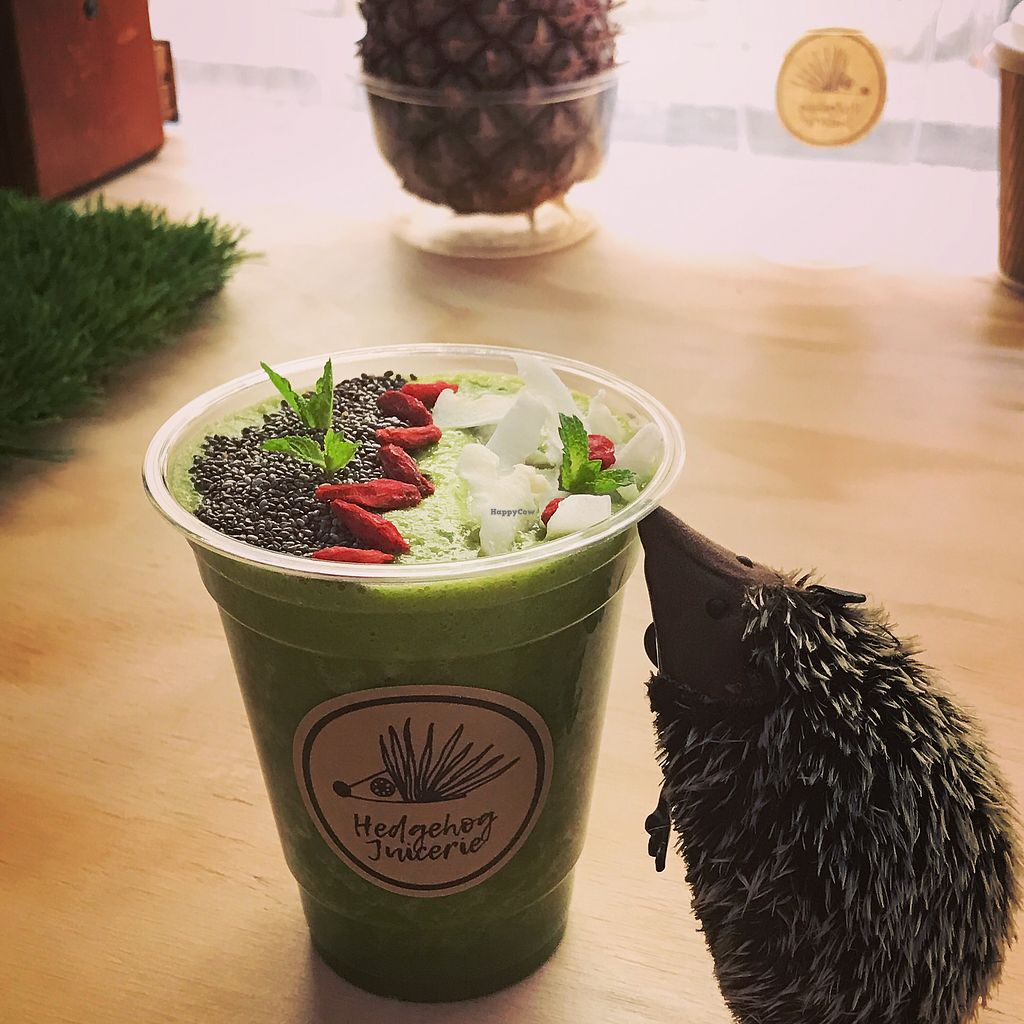 "Photo of Hedgehog Juicerie  by <a href=""/members/profile/HedgehogJuicerie"">HedgehogJuicerie</a> <br/>Green smoothie ? <br/> October 2, 2017  - <a href='/contact/abuse/image/95969/311071'>Report</a>"