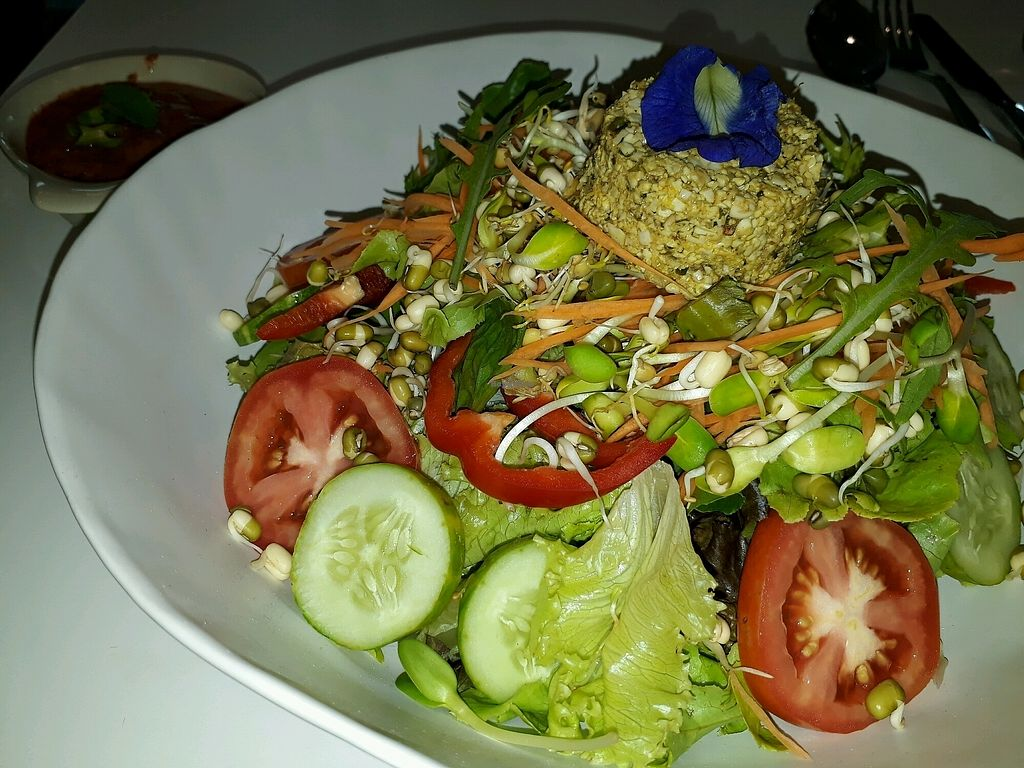 """Photo of Nourished by Gade  by <a href=""""/members/profile/LilacHippy"""">LilacHippy</a> <br/>Organic salad, raw vegan <br/> September 9, 2017  - <a href='/contact/abuse/image/95990/302362'>Report</a>"""