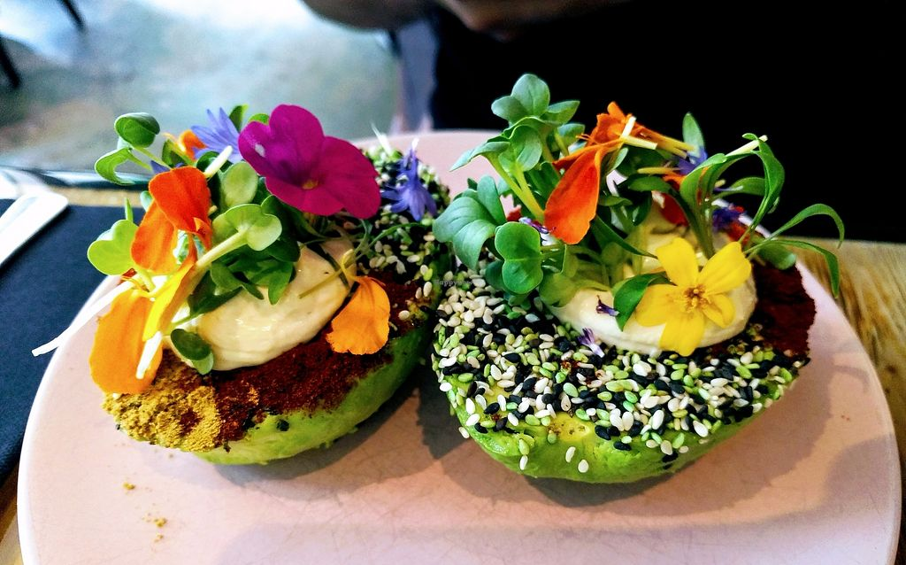 "Photo of The Avocado Show  by <a href=""/members/profile/karo"">karo</a> <br/>The Avo Garden - filled with hummus. Vegan! <br/> August 10, 2017  - <a href='/contact/abuse/image/96071/291286'>Report</a>"