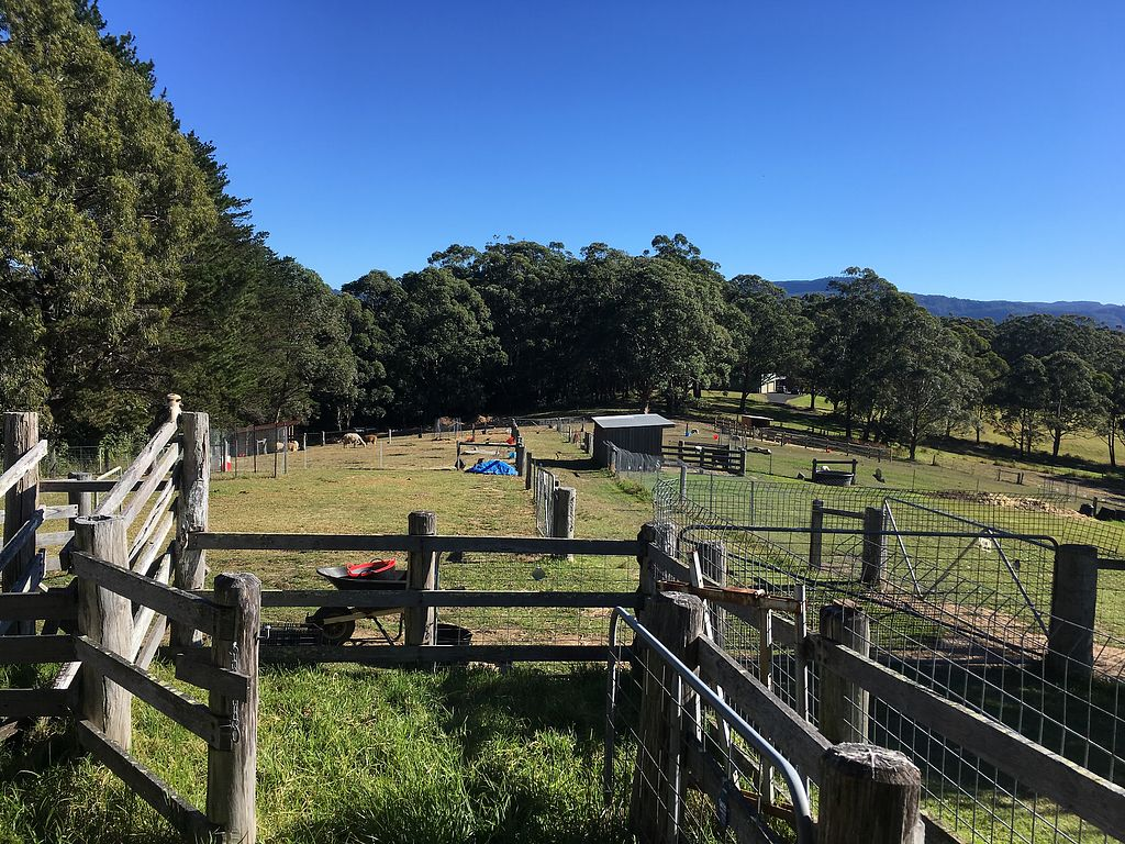 """Photo of Back 2 Earth B&B  by <a href=""""/members/profile/Mslanei"""">Mslanei</a> <br/>view of the paddock  <br/> July 16, 2017  - <a href='/contact/abuse/image/96289/280954'>Report</a>"""