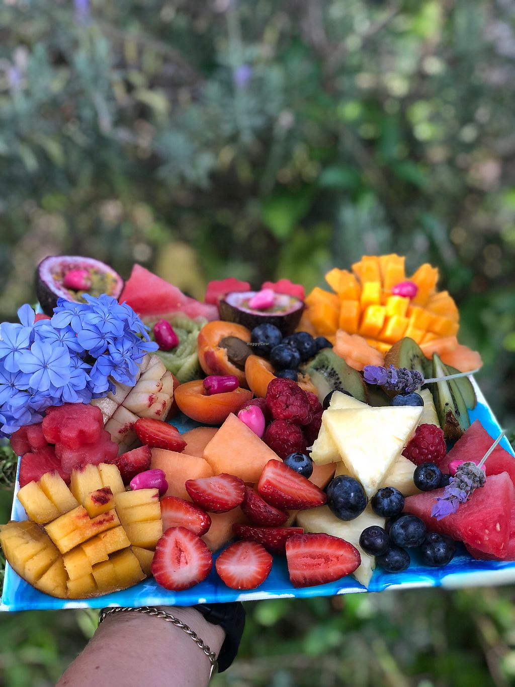 """Photo of Back 2 Earth B&B  by <a href=""""/members/profile/JennyHammond"""">JennyHammond</a> <br/>Organic fruit platter <br/> March 4, 2018  - <a href='/contact/abuse/image/96289/366419'>Report</a>"""