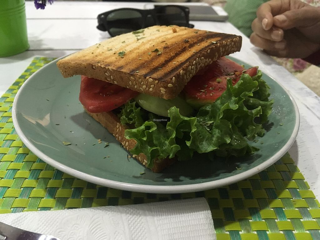 """Photo of CLOSED: Bouganvilla  by <a href=""""/members/profile/vegan_ryan"""">vegan_ryan</a> <br/>Veggie sandwich <br/> July 16, 2017  - <a href='/contact/abuse/image/96391/281213'>Report</a>"""