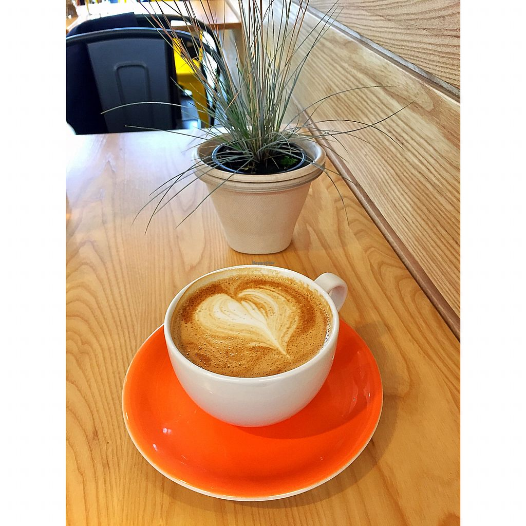"""Photo of The Happy Pear  by <a href=""""/members/profile/LouiseHarbourne"""">LouiseHarbourne</a> <br/>Happy Pears Coffees are always made with love ? <br/> July 24, 2017  - <a href='/contact/abuse/image/96642/284402'>Report</a>"""