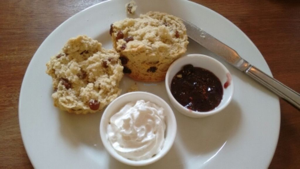 """Photo of Gillam's Tea Room  by <a href=""""/members/profile/craigmc"""">craigmc</a> <br/>vegan scone, clotted cream and jam from edinburgh in a jar <br/> May 29, 2016  - <a href='/contact/abuse/image/9676/151326'>Report</a>"""