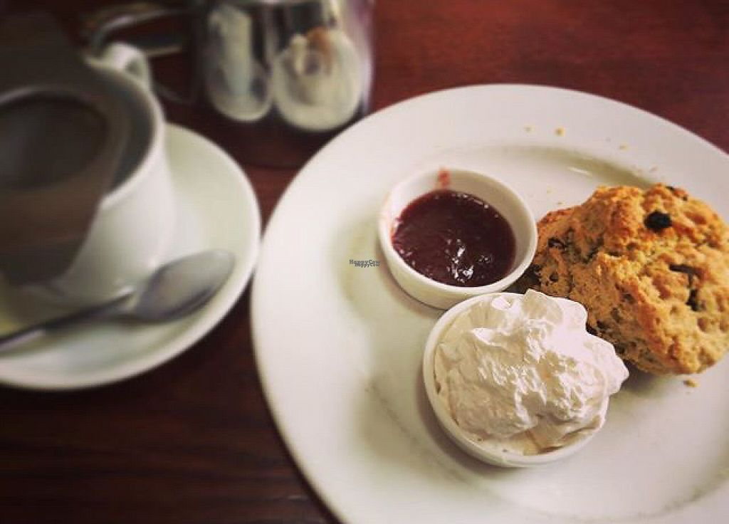 """Photo of Gillam's Tea Room  by <a href=""""/members/profile/SL17"""">SL17</a> <br/>Tea and vegan-friendly scones :-) <br/> March 25, 2017  - <a href='/contact/abuse/image/9676/240447'>Report</a>"""