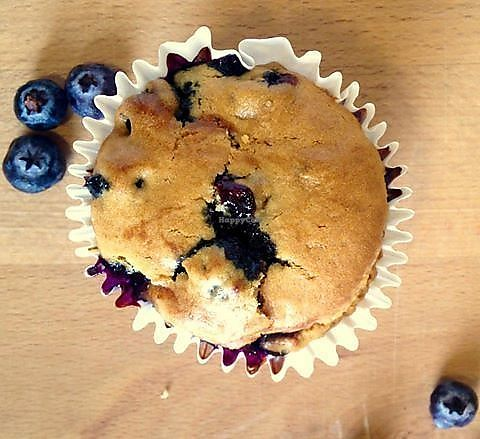 """Photo of La Masa Panaderia  by <a href=""""/members/profile/YanethGris"""">YanethGris</a> <br/>Vegan blueberry muffin! <br/> September 2, 2017  - <a href='/contact/abuse/image/96861/299857'>Report</a>"""