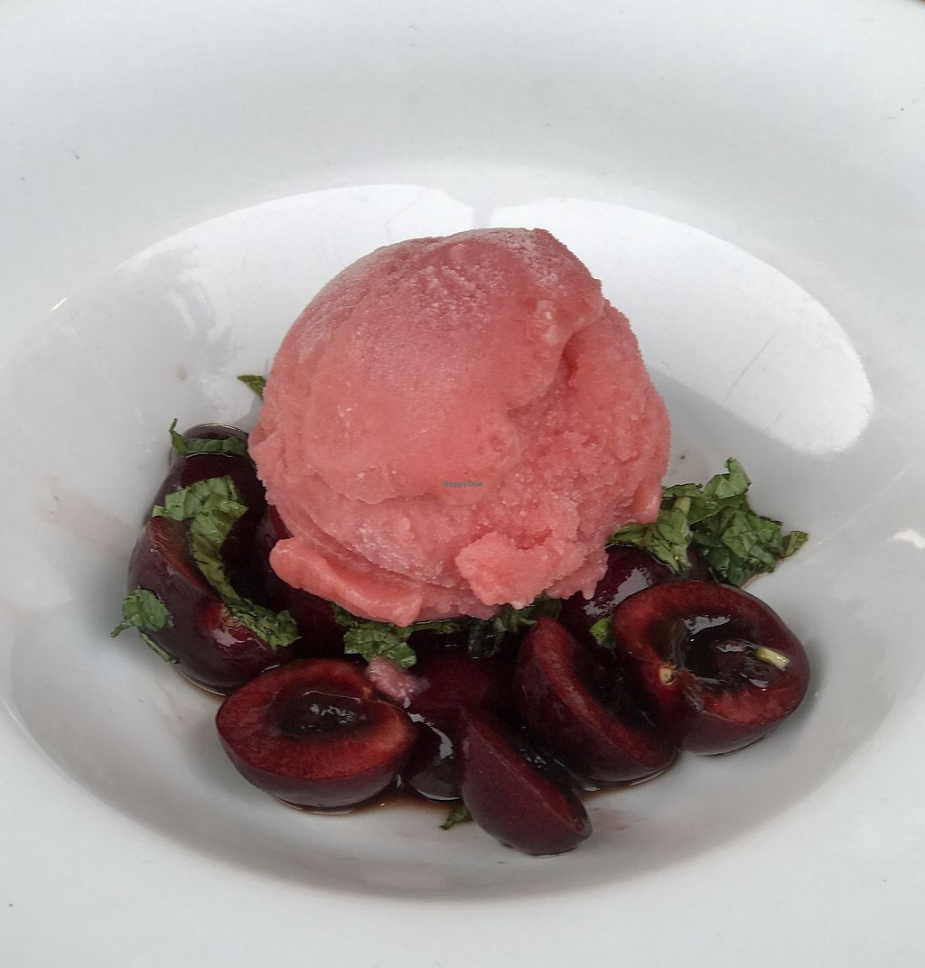 """Photo of Hardy Park Bistro  by <a href=""""/members/profile/JolantaThorburn"""">JolantaThorburn</a> <br/>Frozen Rose Sorbet <br/> July 23, 2017  - <a href='/contact/abuse/image/96882/283733'>Report</a>"""