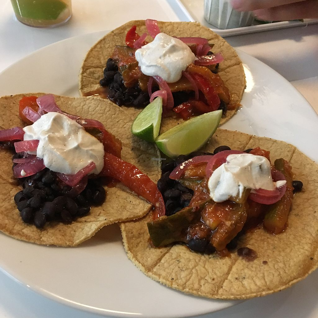 "Photo of Burrito Baby  by <a href=""/members/profile/vegancookie243"">vegancookie243</a> <br/>Vegan Black Bean Tacos with cashew cream <br/> July 25, 2017  - <a href='/contact/abuse/image/96973/284720'>Report</a>"